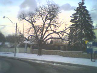 spadina-house-1.jpg